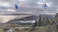 wildlife fim scotland