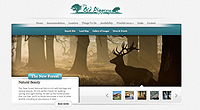 website design new forest